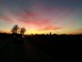 Einfahrt nach Kiebingen bei Sonnenuntergang