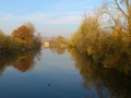 Neckar bei Kiebingen