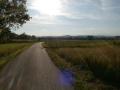 Talweg mit Blick auf Kiebingen 2014